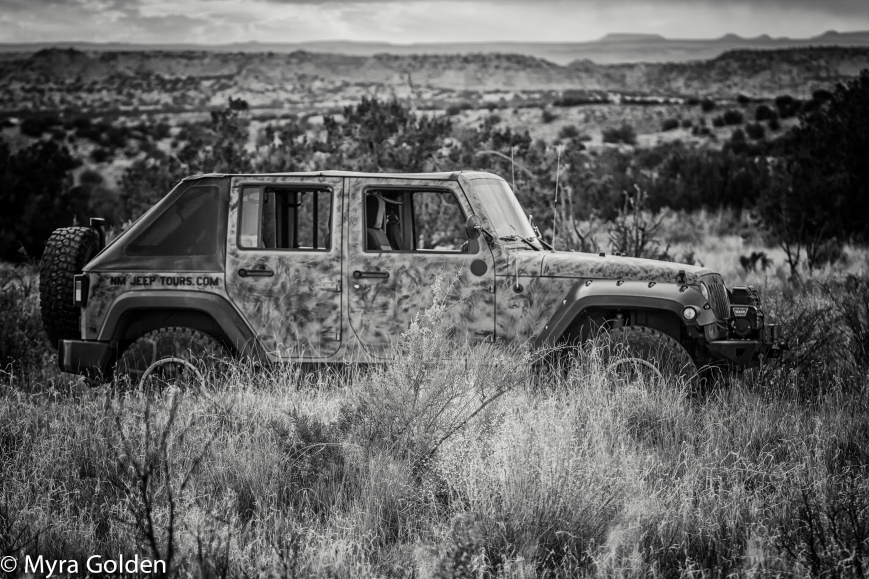 New Mexico Jeep Tours.jpg